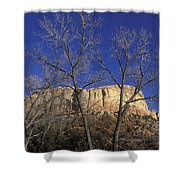 Kitchen Mesa And Bare Cottonwood Trees Shower Curtain