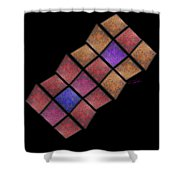 Kite Shower Curtain