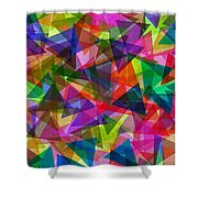 Kite Festival Shower Curtain