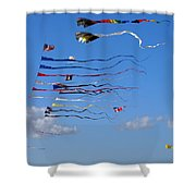 Kite Season Shower Curtain