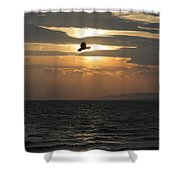 Kite Sunset Shower Curtain