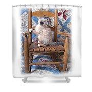 Kitten In The Rocker Shower Curtain
