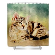 Kitten - Painting Shower Curtain