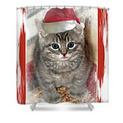 Kitten Playing Santa  Shower Curtain