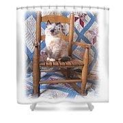 Kitten, Quilt And Rocker Shower Curtain