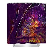 Kitten Red Cat Cat Tom Cat Pets  Shower Curtain