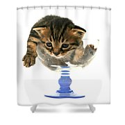 Kitten Sits In A Glass  Shower Curtain