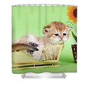 Kitten With Flover Shower Curtain