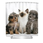 Kitten With Puppies Shower Curtain