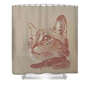 Kitten Wonder Shower Curtain