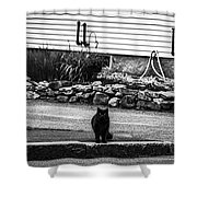 Kitty Across The Street Black And White Shower Curtain