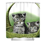Kitty Caddy Shower Curtain