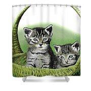 Kitty Caddy Shower Curtain