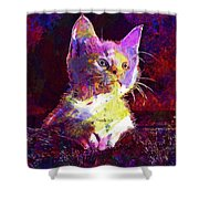 Kitty Cat Kitten Pet Animal Cute  Shower Curtain