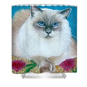 Kitty Coiffure Shower Curtain