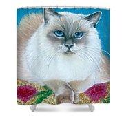 Kitty Coiffure Shower Curtain
