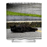 Kitty In The Street Shower Curtain