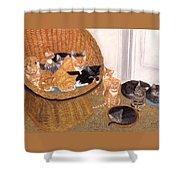 Kitty Litter I Shower Curtain