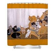 Kitty Litter II Shower Curtain