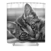 Kitty Nap Shower Curtain