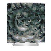Kitty Portrait  Shower Curtain