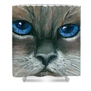 Kitty Starry Eyes Shower Curtain