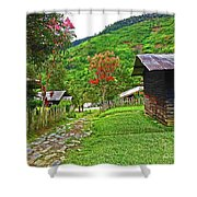 Kiwi Village Of Papua Shower Curtain
