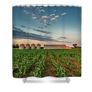 Knee High Sweet Corn Shower Curtain