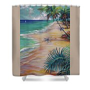 Knight Beach Shower Curtain
