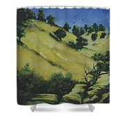 Knights Ferry 1 Shower Curtain