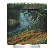 Knights Ferry 2 Shower Curtain
