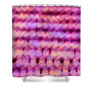 Knit Together Shower Curtain