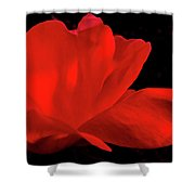 Knockout Shower Curtain