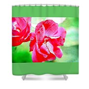 Knockout Watercolor Shower Curtain