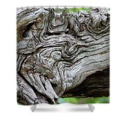 Knotty Tree Shower Curtain