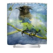 Knowing It Has Wings Shower Curtain