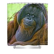 Knowing Smile Shower Curtain