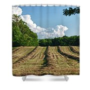 Knox Farm 11625 Shower Curtain