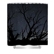 Kodachrome Basin Night Sky 2963 Shower Curtain