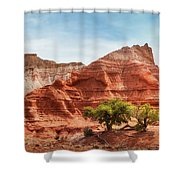 Kodachrome Park Colorful Desert Beauty In Spring. Shower Curtain