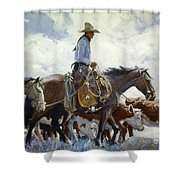 Koerner: Cowboy, 1920 Shower Curtain