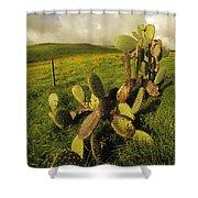 Kohala Cactus Shower Curtain