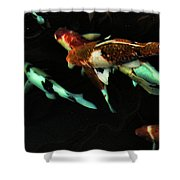 Koi 1 Shower Curtain