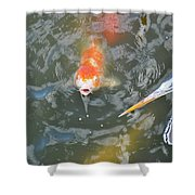 Koi And Great Blue Heron Shower Curtain