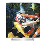 Koi Fish 2 Shower Curtain
