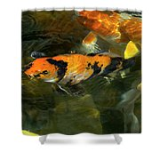 Koi Fish Blowing Bubbles Shower Curtain