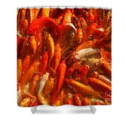 Koi Fishes In Feeding Frenzy Shower Curtain