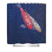 Koi Fish Partners Shower Curtain