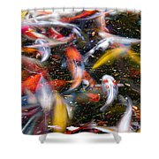 Koi Fish Pond Abstract Shower Curtain