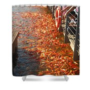 Koi Fishes In Feeding Frenzy Part Two Shower Curtain